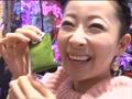 #150 CRぱちんこAKB48/CR花の慶次~漢