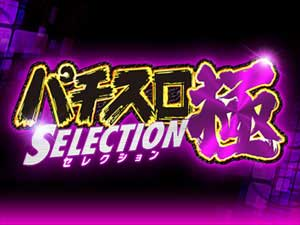 パチスロ極SELECTION