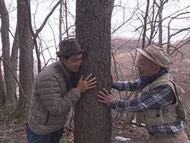 林業振興課(1) 林業振興課① 企画発表&ツリーハウス