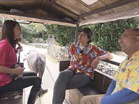 15周年視聴率を獲るぞツアーin沖縄⑥ 夢の島・竹富島弾丸めぐり