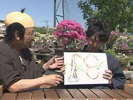 アダルトYOYO'Sへの道(5) アダルトYOYO'Sへの道「盆栽」②  盆栽づくり&コケ盆栽
