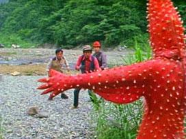 第18話 「化石男ヒトデンジャー」