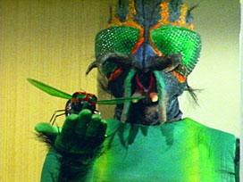 第42話 「悪魔の使者 怪奇ハエ男」