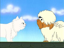 #24 ネコに恋したゼンジー