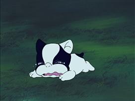 #37 伝説の犬、フレディー