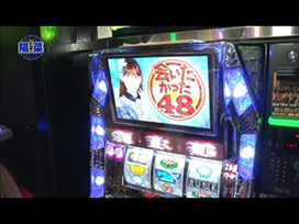 #8 パチスロ北斗の拳 転生の章/ぱちスロAKB48