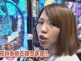 #362 CRぱちんこAKB48 バラの儀式/CRヴァン・ヘルシングⅡ