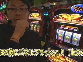 #595 ハナハナホウオウ-30/マイジャグラーⅢ/SLOT魔法少女まどか☆マギカ2