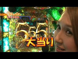 #13 CRぱちんこAKB48 バラの儀式/CR牙狼 金色になれ