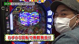 #173 P大海物語4スペシャル/Pフィーバー戦姫絶唱シンフォギア2