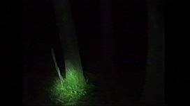 投稿されてきた!呪いの心霊映像8