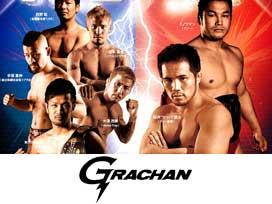 GRACHAN 14
