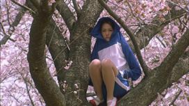第5話 エピソード13 青い憂鬱と想いモノ/エピソード14 季節外れのクリスマス/エピソード15 メリーシラスマス