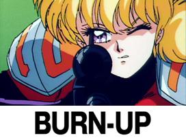 BURN-UP バーンナップ