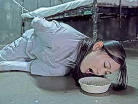 【11/28新規作品追加!】<br>女子医療刑務所